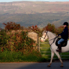Не стискайте с колене по време на езда