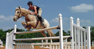 Дисциплини при Английския стил езда