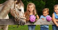 За децата и конете