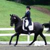Да танцуваш с кон, задържащ енергия