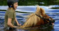 Пат Парели – Как да научим коня да преминава уверено през вода