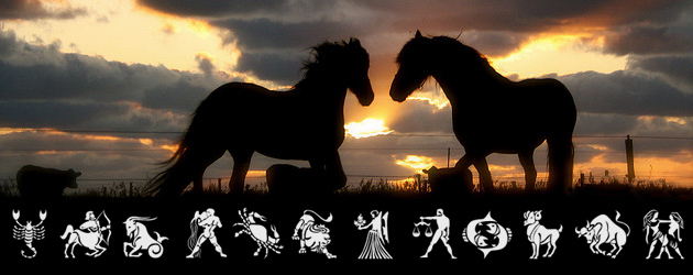 Хороскоп при конете