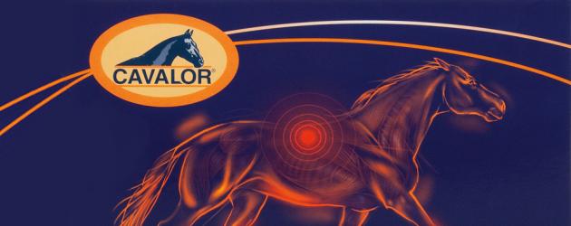 Cavalor – храни, добавки и препарати за коне