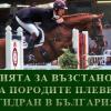 Асоциация на породите Плевенски кон и Гидран