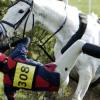 Как да възвърнете увереността си след инцидент при езда