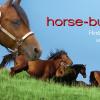 """Онлайн магазин за коне и кучета """"Horse-Bulgaria"""""""