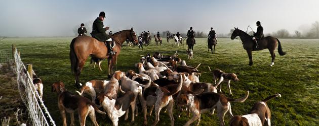 Лов с коне и кучета