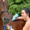 Физиология, анатомия и заболявания при конете