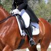 Истинска събраност на коня – Част 4. Повдигане основата на шията на коня