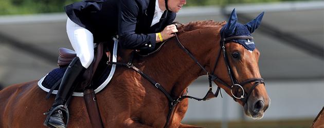 Защо слагаме наушник на конете