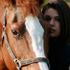 Как взаимодействат енергийните системи на коня и човека