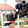 Конна база и клуб по конен спорт Елит