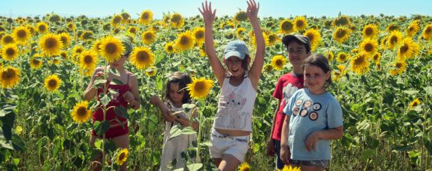Щастливо лято за вашите деца! Детски лагери с обучение по езда