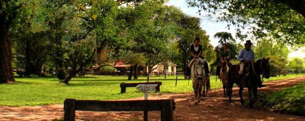 Клуб по конен спорт и конна база Змейово