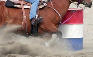 rodeo-flying-feet-dust-web