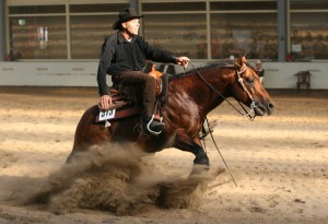 reining4