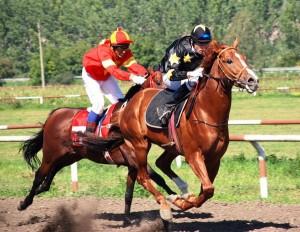 асоциация за конни надбягвания