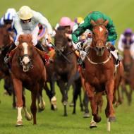 гладки конни надбягвания