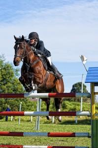 всестранна езда прескачане на препятствия