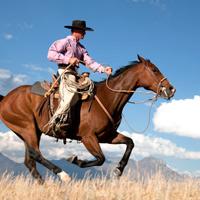 конна езда - уестърн