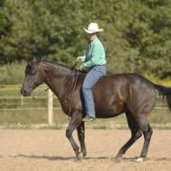 Стейси Уестфол и езда сред природата