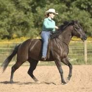 Безопасна езда в природата от Стейси Уестфол