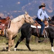 езда сред природата с нов кон