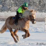 Зиман езда върху сняг и лед