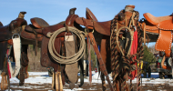 Екипировка за езда и амуниция