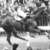 Най-великият състезателен кон