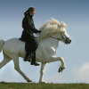 Как да научим коня да дава крак