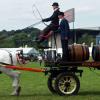 Как изпитват тежковозните коне