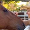 Езика на конете – Част 1