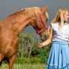 Конят е ваше огледало