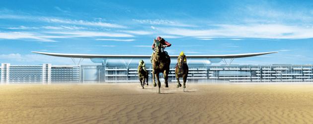 Рейсинг терминология при конните надбягвания