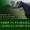 Асоциация за развъждане на Рисиста порода коне