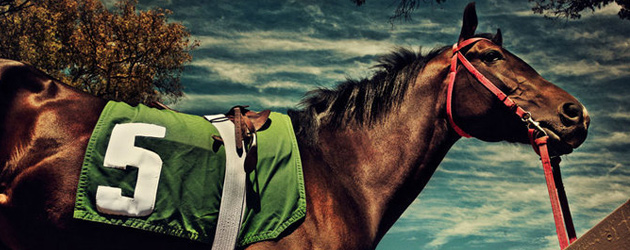 Тренировъчна скала на коня – Част 1