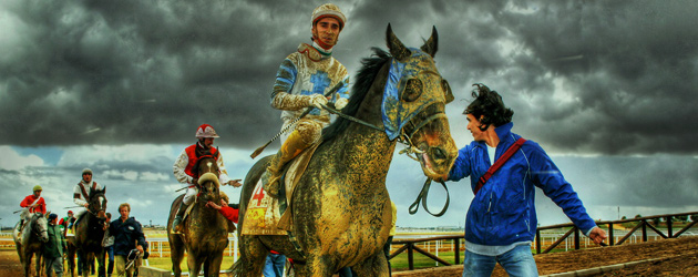 Тренировъчна скала на коня – Част 6 – Изправеност и/или Изкривеност в коня и ездача