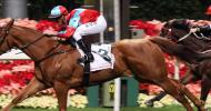 Международни конни надбягвания в Хонг Конг