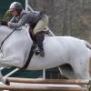 Холщайнски кон – Холщайнер (Holsteiner)