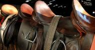 Видове седла за езда