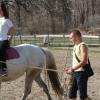 """Клуб по коневъдство и конен спорт """"Божур"""""""