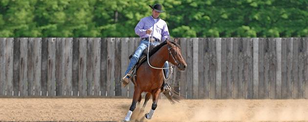 Използване на One-Rein Stop за контрол на галопа на коня