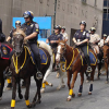 Професия конен полицай