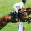 """Клуб по конен спорт """"Атила-Й"""""""