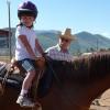 Конят в хиппотерапията