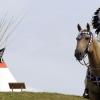 Индианците и конят
