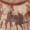 Ахал-текинецът – Азиатец ли е? Съживете тракийския кон!
