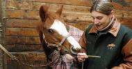 Херпесни заболявания при конете