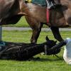Паданията при конна езда – травматизмът в конния спорт
